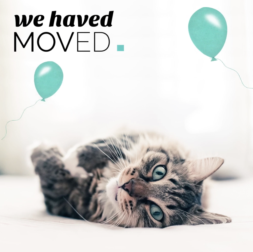 We've Got Some Exciting News Right Meow!